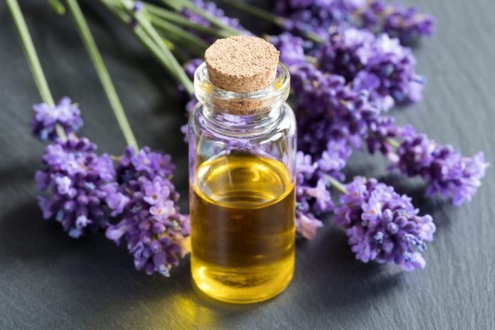 Soigner son enfant avec les huiles essentielles de Lavande